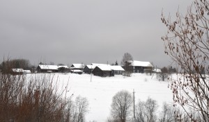 Панорамный вид на деревню Орловка