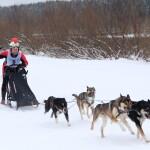2 гонка упряжки лыжники  (6)